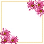 Pink Daisies Corner Border on White