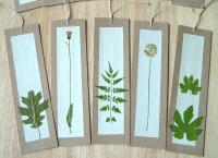 Shapes-of-Nature Bookmarks